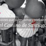 Cómo, cuándo y dónde hacer el Camino de Santiago