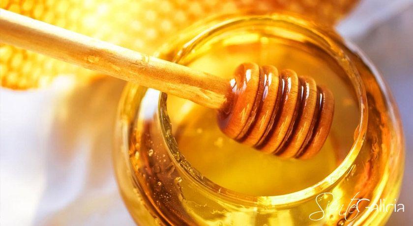 mostra do mel de quiroga