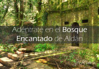Bosque Encantado de Aldan