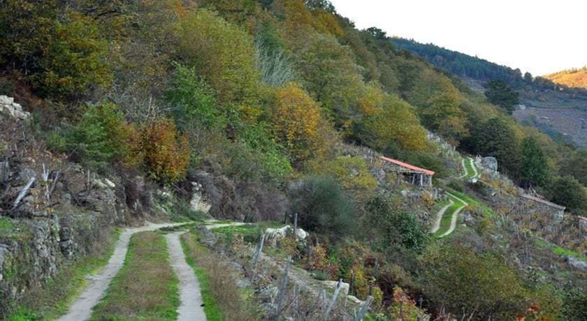 Ruta Santa Maria de Pesqueiras
