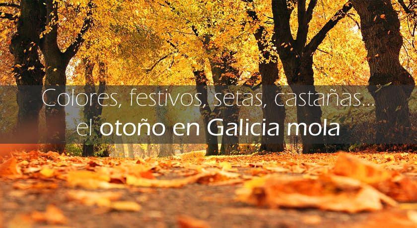Lo que más mola del otoño en Galicia