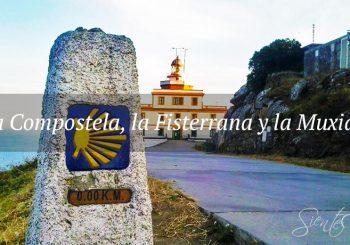 Credenciales Camino Santiago