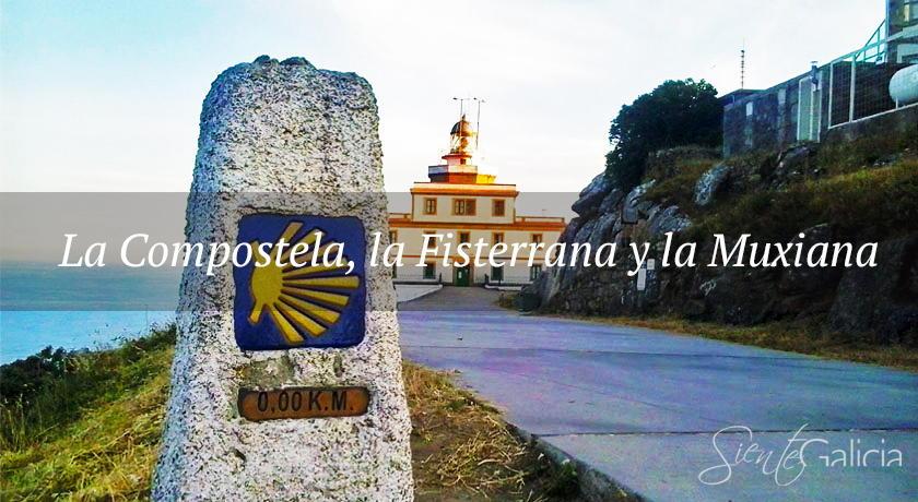 La Compostela, la Fisterrana y la Muxiana