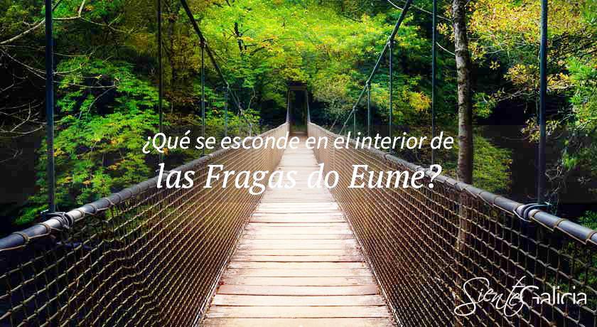 Fragas do Eume Galicia